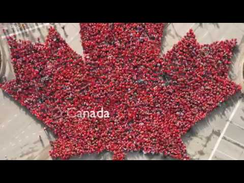 Canada 150 Mr. Villella's Gr 2/3  Class St Pius X School Tecumseh ON