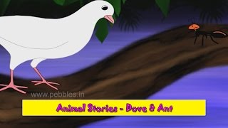 Kabutar Ani Mungi | Dove & Ant | Animal Stories Marathi for Kids | Marathi Goshti for Children HD
