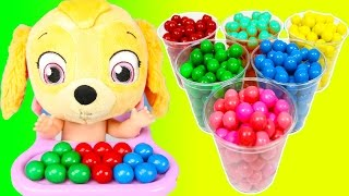 Color Learning with Paw Patrol Sky on School Bus Gumballs | Teacher Ellie Sparkles Pt 1