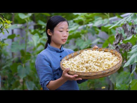 幾百米高的山上種了一種� 東西,爬到山頂 挖些回去,做自己喜歡吃的百合 美食 Chinese food made with Lilium 野小妹wild girl