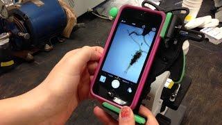 Cyanobacteria Monitoring: Perspectives from EPA Region 1