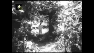 HAWAAON PE LIKH DO HAWAAON KE NAAM -KISHORE KUMAR -GULZAR -HEMANT KUMAR (DO DOONI CHAAR 1970)
