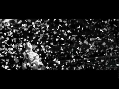 Up With The Birds - Coldplay (Fan Video)
