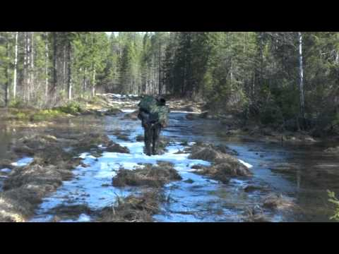охота и рыбалка на севере карелии видео