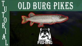 Big Pikes Tutorial🐟OldBurg Best Pike Spot Russian fishing 4
