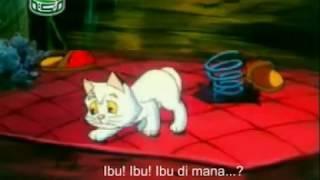 Cerita Kucing Sesat - Katon Arab