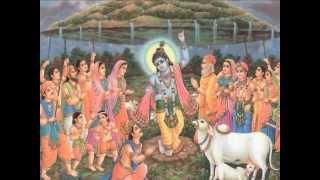 Lord Jagannath Bhajan from USA