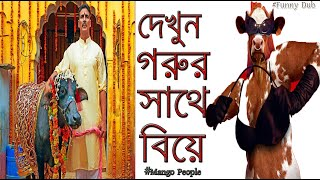 Toilet Movie Bangla Funny Dubbing |Toilet Funny Dubbing | Toilet BanglaTalkies | Mango People Dub
