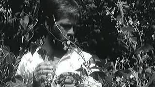 Koziat Rog 1972