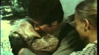 Robert Fuller as James Reed