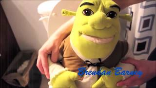 Youtube Poop Passion on the Shrek