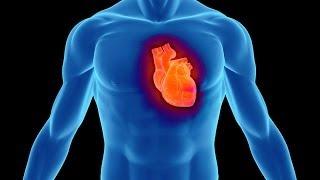 هل القلب يعقل كما أخبرالقرآن ؟
