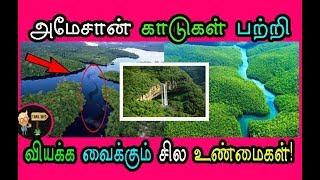 அமேசான் காடுகள் பற்றி வியக்க வைக்கும் சில உண்மைகள்!(Amazon forest) - Tamil Info 2.0
