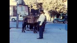 Shiraz Street Scenes from Iran in 1968