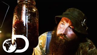 This Sweet Tasting Mulberry Infused Whisky Will Blow Your Mind | Moonshiners