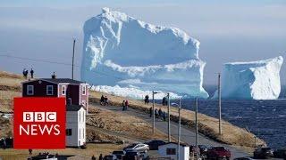 Huge iceberg looms over Canada