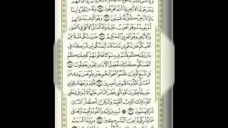 سعد الغامدي - سورة الرّوم