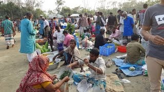 Amazing Village Market   Very Big Vegetables Market In Rural Village Bangladesh