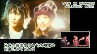 オーロラ三人娘「オムライス」Emiru (Aicle) & Sarino (Annie's Black)