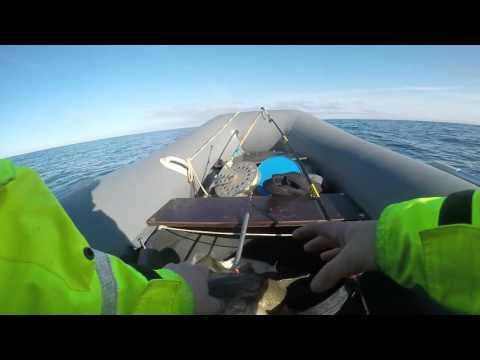 отдых и рыбалка на баренцевом море