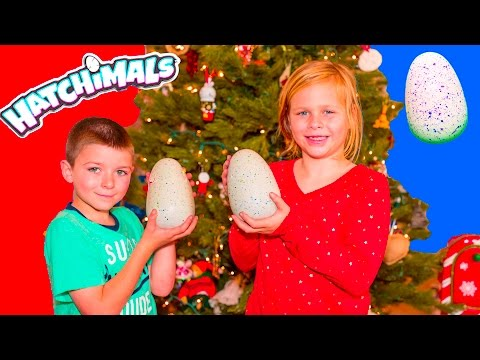 ASSISTANT and BATBOY Hatchimal CHristmas Surprise With Paw Patrol PJ Masks Holiday Toys Video
