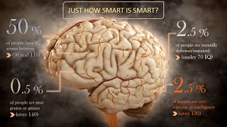 ✔ Top 10 Smartest People In the World (IQ Test & Accomplishment)