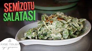 SEMİZOTU SALATASI | Çiğ Beslenme Yemek Tarifleri - Mehmet Ak ile