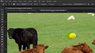 ফটোশপ টিউটোরিয়াল পর্ব-১৩ Photoshop Bangla Tutorial Lesson -13 (Healing Brush Tool)