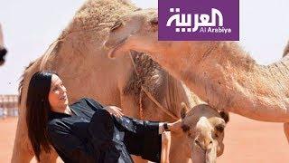 نشرة الرابعة .. ما قصة الأجانب مع الإبل في السعودية؟