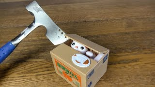 What's inside a Cat Coin Bank?
