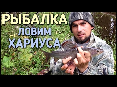 локальная рыбалка