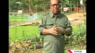 Rajdola Bell @ BTV Krishi Dibanishi Part 1