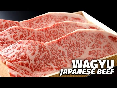 Japan s Most Expensive Beef