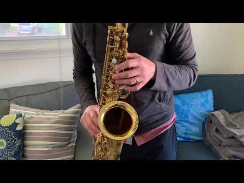 Xxx Mp4 217 Xxx Selmer Mark VI Alto Saxophone Demo Www Dcsax Com 3gp Sex