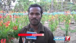 Nagapattinam farmers show interest in