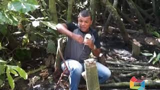 ENCONTRADO CORPO DE DIABO LOIRO EXECUTADO PELO TRIBUNAL DO CRIME  MAT 03 11 06 19