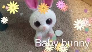 Beanie boos MV: baby bunny (Early Easter special)
