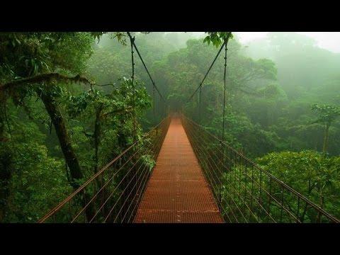 Top 10 Secret places of Amazon RainForest
