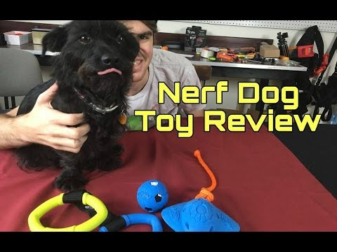 Xxx Mp4 Ghost Reviews Latest Nerf Dog Products 3gp Sex