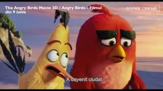 The Angry Birds Movie 3D / Angry Birds - Filmul (dublat & subtitrat)