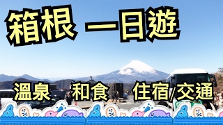 Travel Vlog。箱根一日遊。2/2017