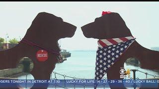 Summer Of Savings: Dog Sculptures and Caterpillar Frenzy