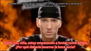 We Made You Eminem Subtitulada en español