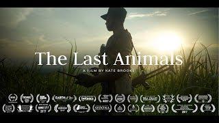 THE LAST ANIMALS Official Trailer (2018) Rhino & Elephants Documentary