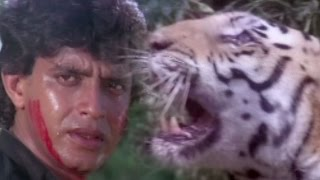 images Mithun Chakraborty Fights With A Tiger Hum Se Hai Zamana Action Scene 5