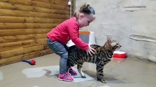 CUTE TODDLER Lile visits CAT
