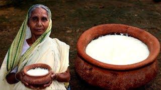 Traditional Misti Doi Recipe by Grandmother   Easy Sweet Curd/Dahi Recipe   Village Food