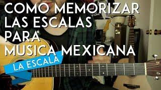 Como SACAR y MEMORIZAR LAS ESCALAS rapidamente! - Tutorial Guitarra - LA ESCALA