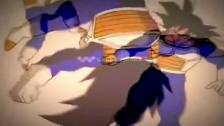 Dragon Ball Z AMV Stratovarius  Destiny