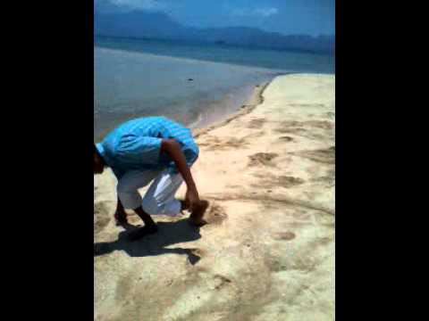 Lariti beach sma 1 sape